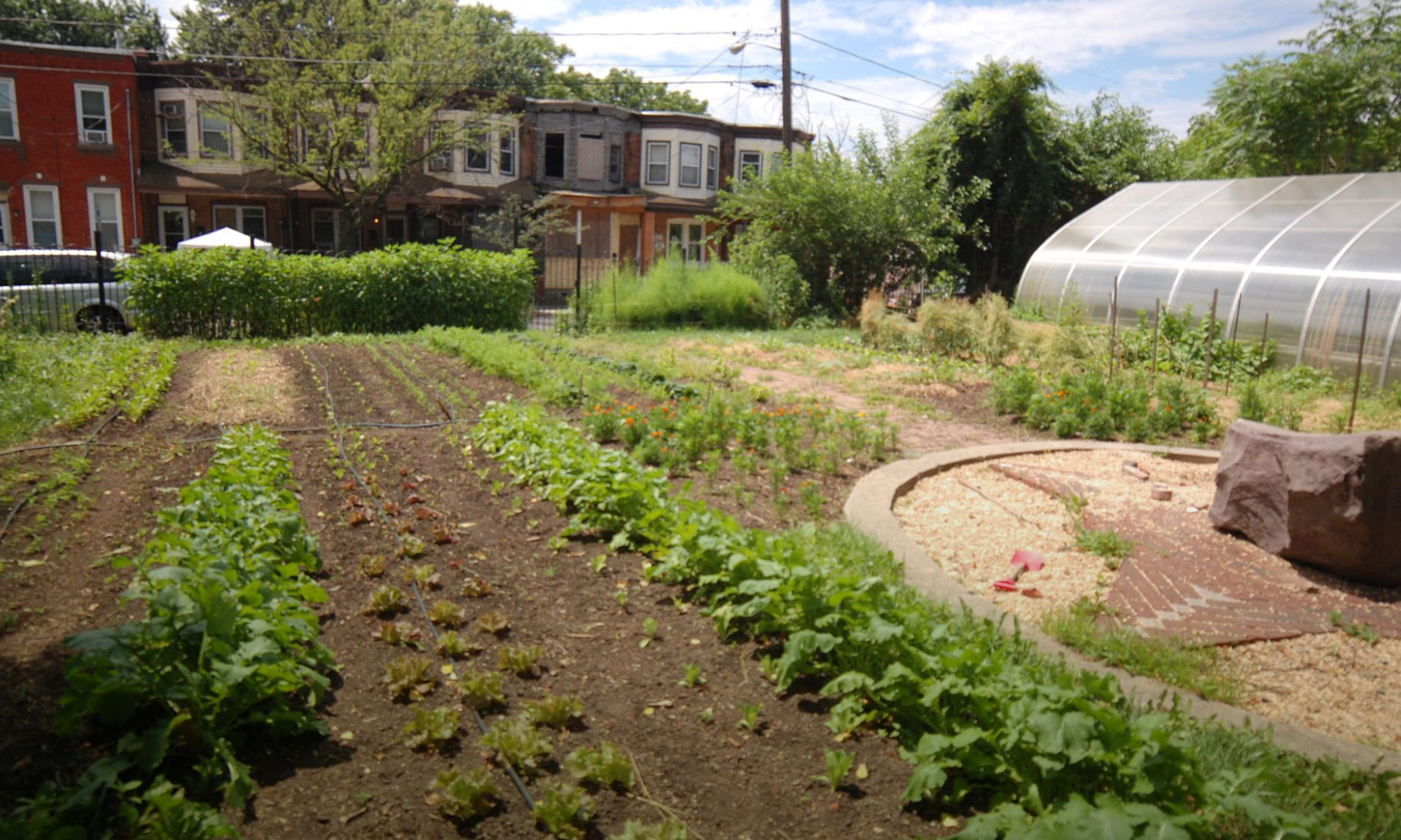 Urban Agriculture & Food Systems Convening: